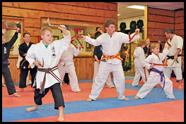 Weapons classes at Don Warreners Martial Arts